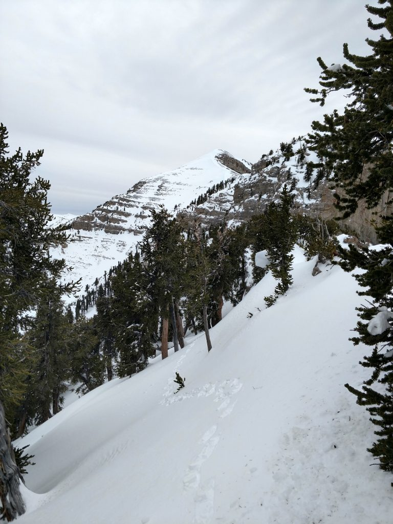 Mt Charleston Winter