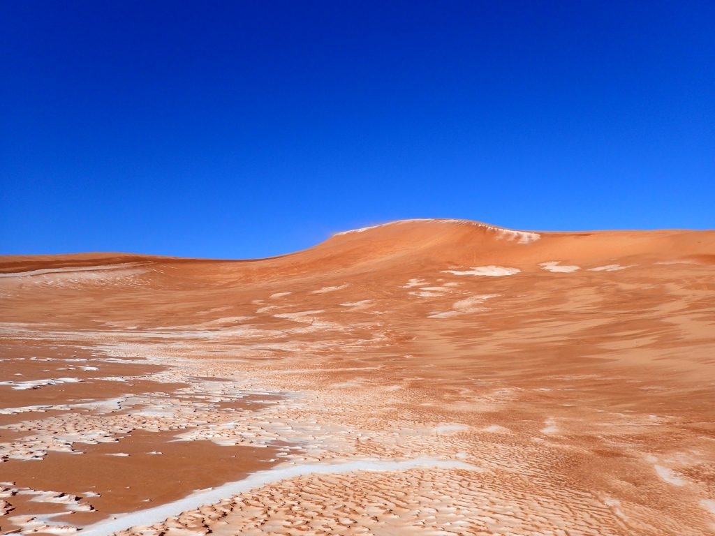 Coral Pink Sand Dunes Winter