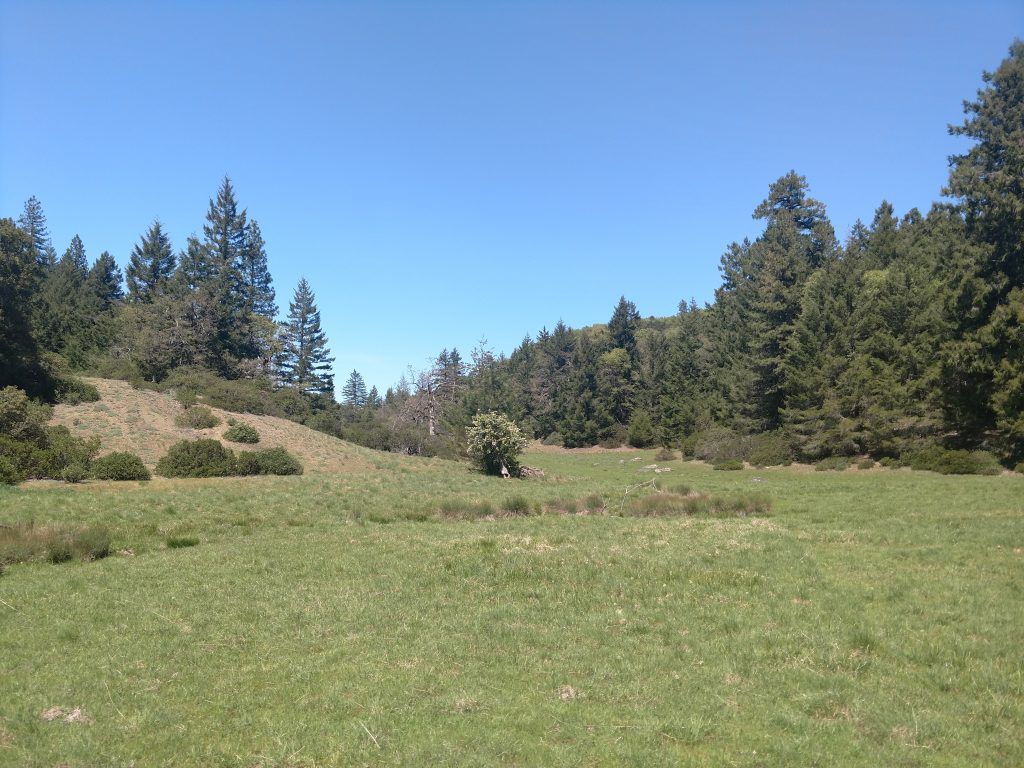 South Fork Eel River Wilderness (3)