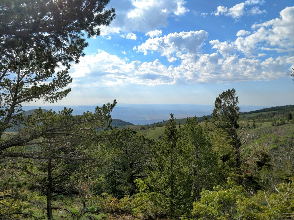 View from Bull creek pass road