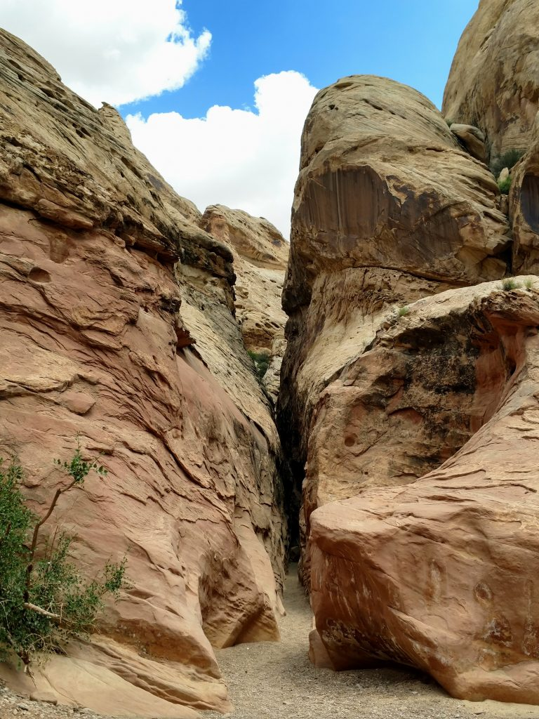Little Wild Horse Canyon (5)