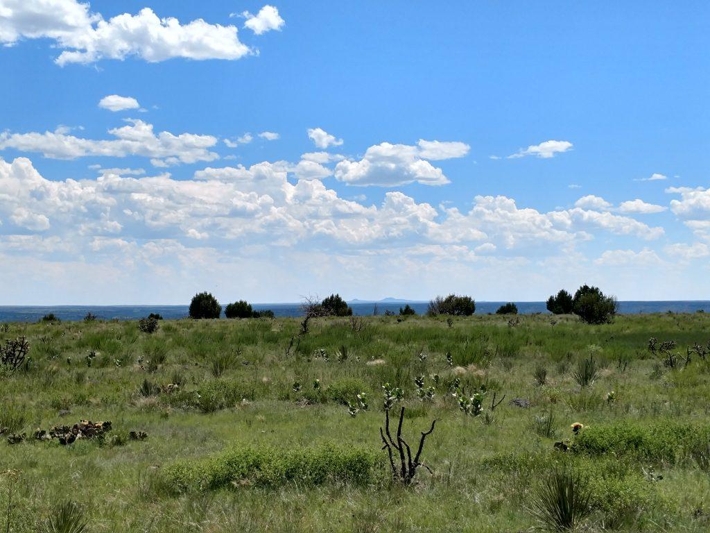 Black Mesa Views