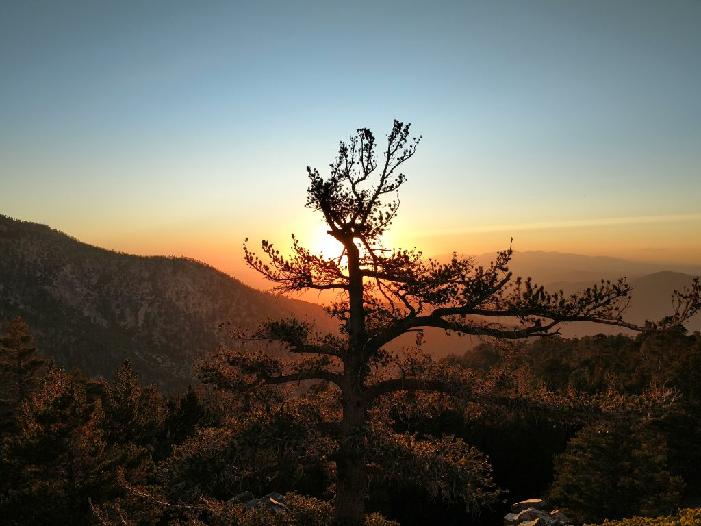 Anderson Peak Sunset