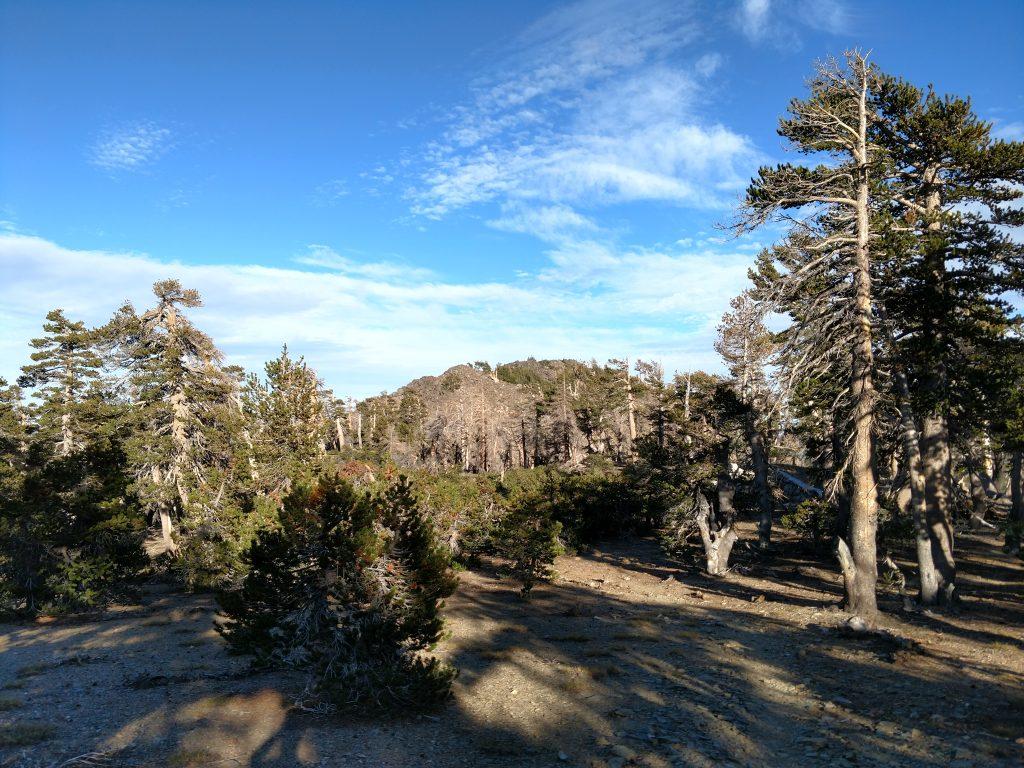 Anderson Peak Trail