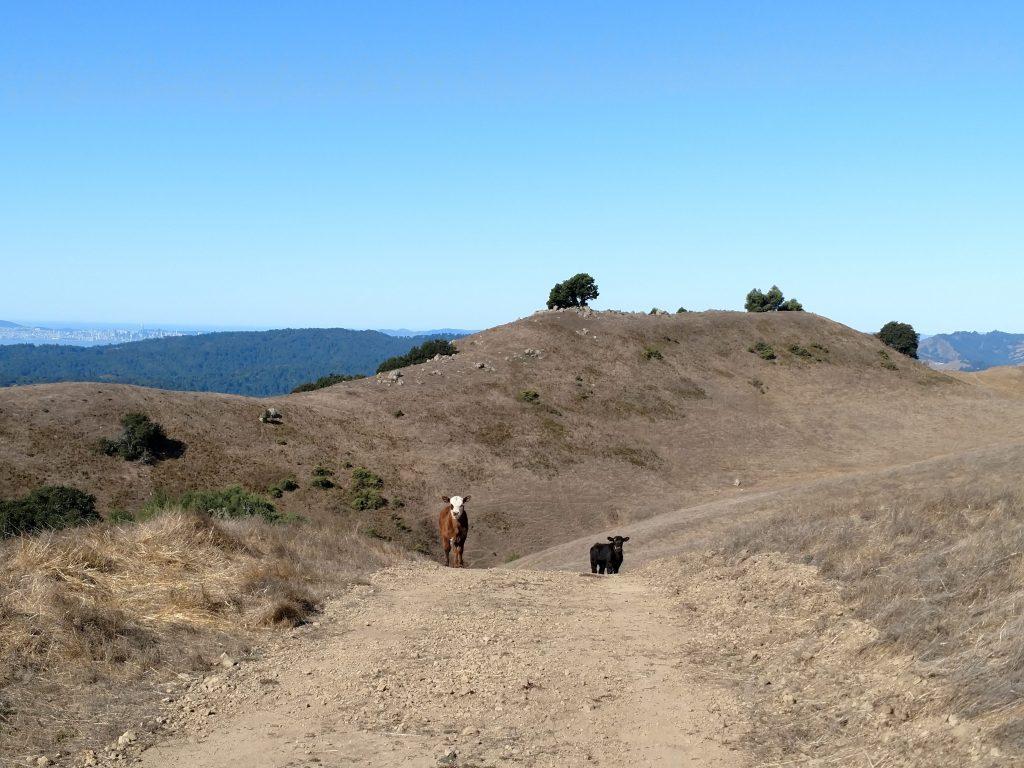 Rocky ridge summit