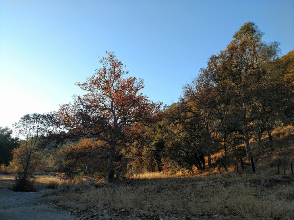 Fall Hike in Morgan Hill