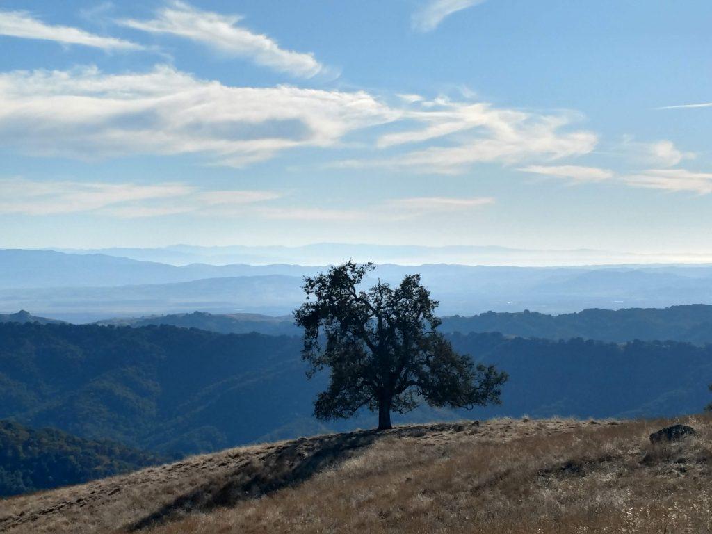 Willson Peak