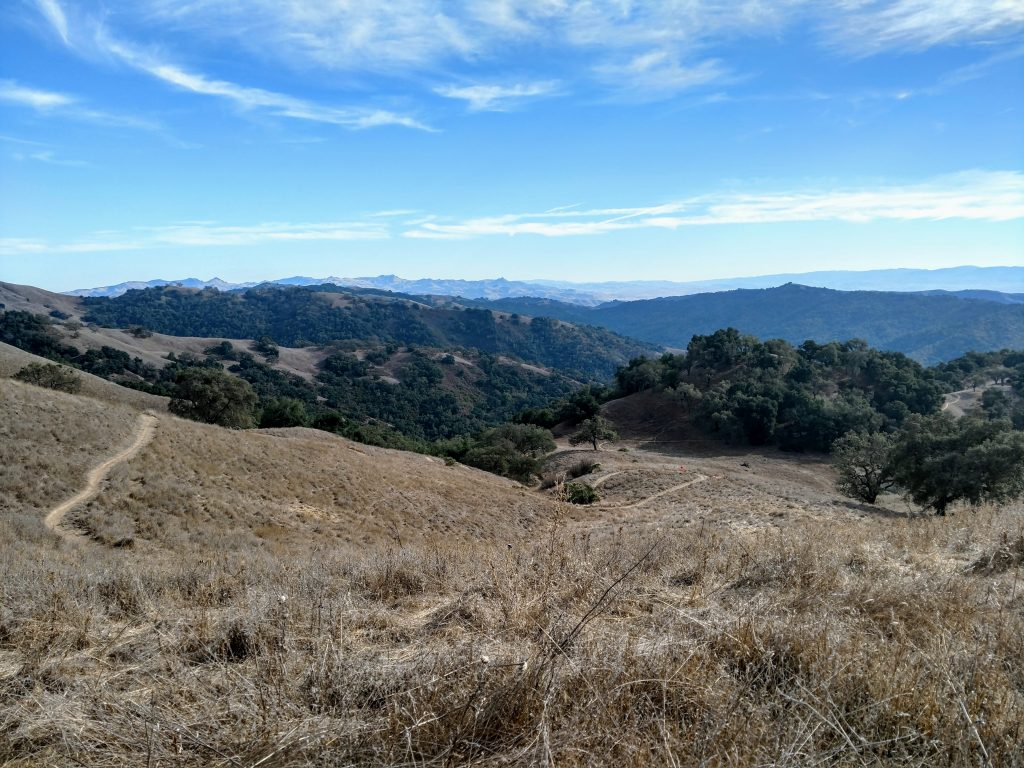 henry Coe state park (2)