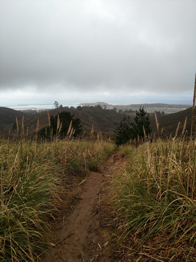 Half Moon Bay Hike