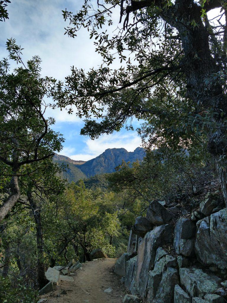 Mount Wrightson, Arizona