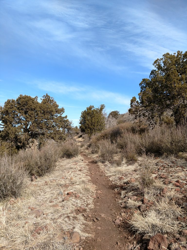 Trail through wilderness