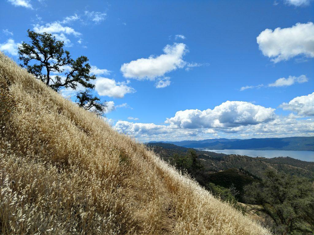 Berryessa Peak Trail