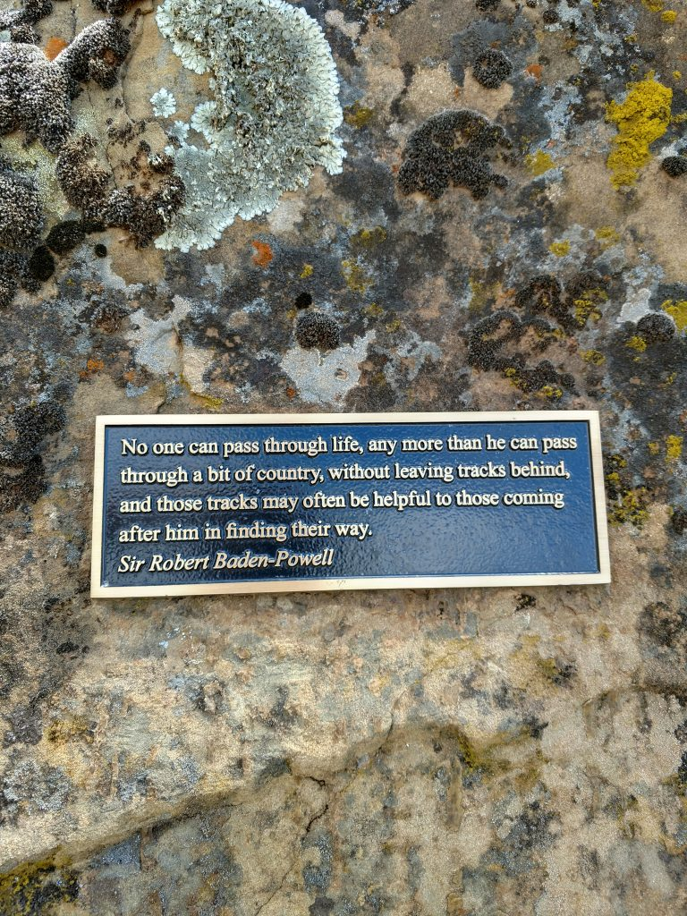 Berryessa Peak Trail (4)