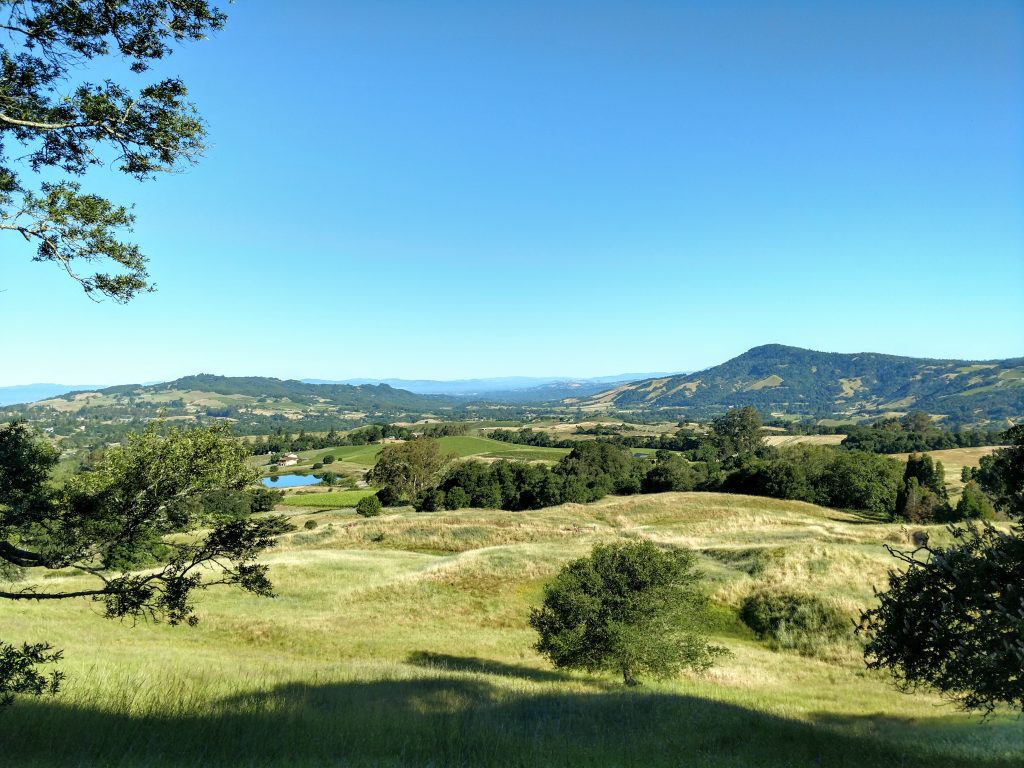North Sonoma Mountain