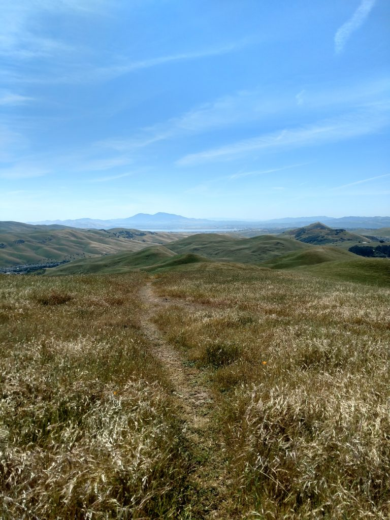 Sulphur Springs Mountain Solono County Vacaville Hike (6)