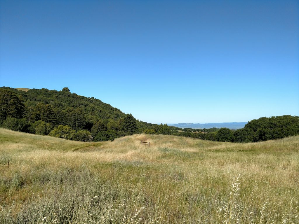 Bennett Valley