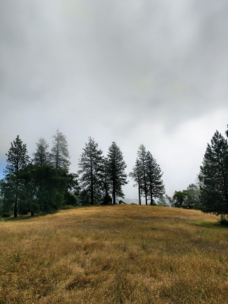 Pine Mountain Ridge Summit