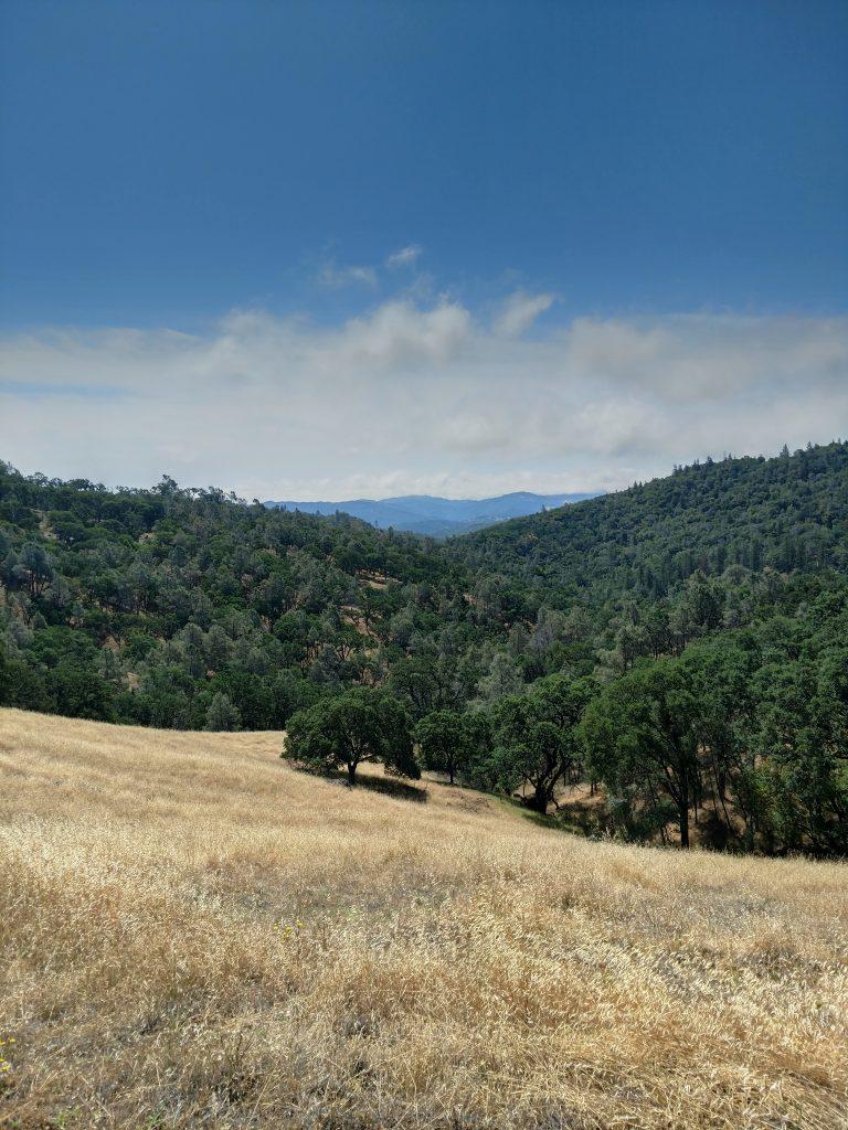 Mt Sizer Trail