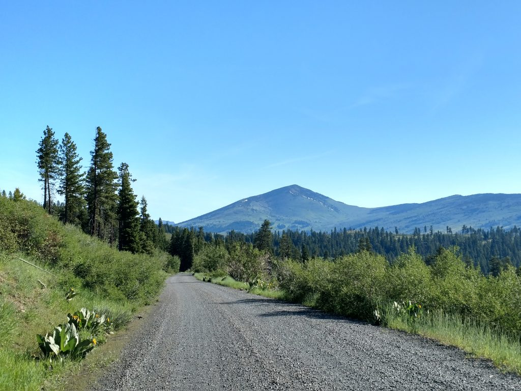 Road to Eagle Peak