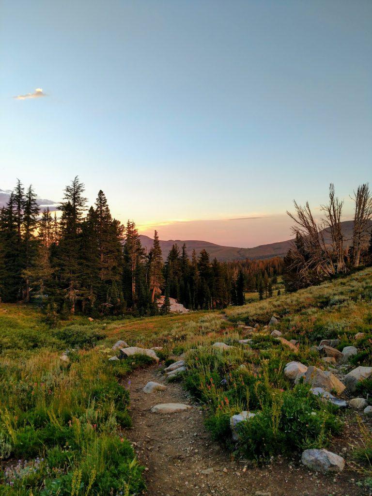 Mokelumne Wilderness