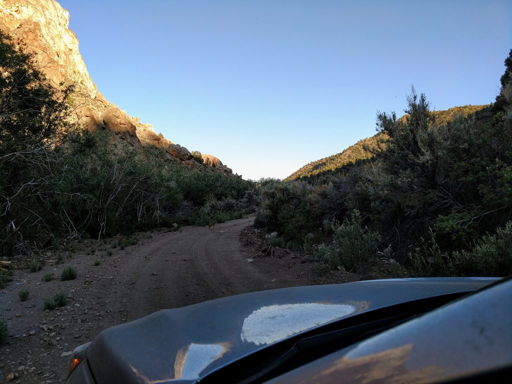 Meadow Canyon Road