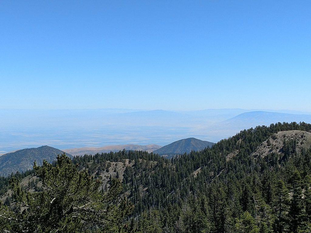 Mt Pinos View
