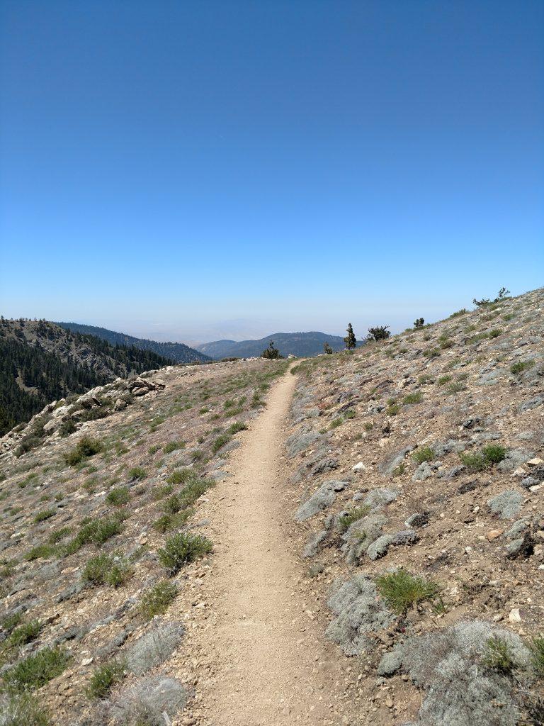 Sawmill Peak Trail