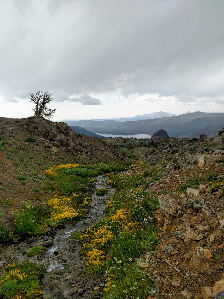 Round Top Wilderness