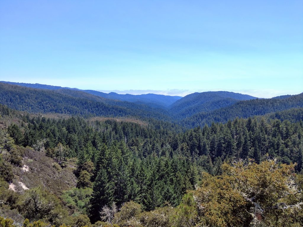 Chalk Mountain - Bay Area Nifty Ninety Peakbagging