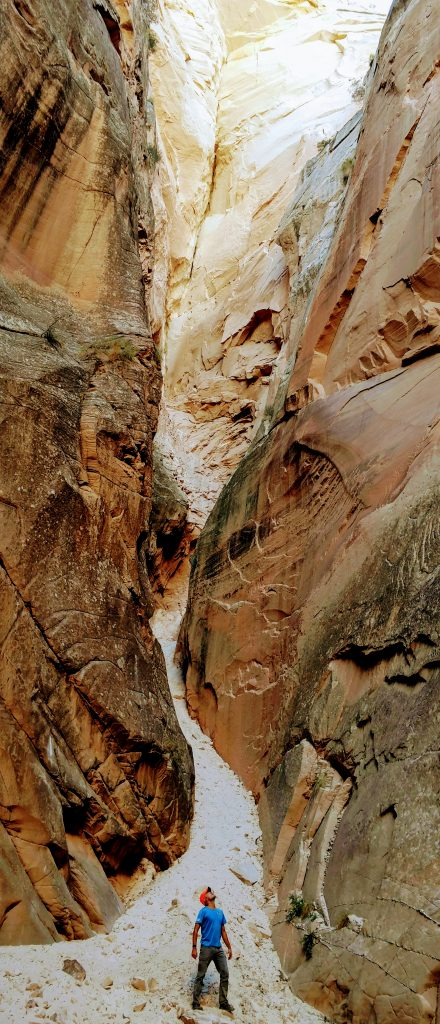 Cottonwood Narrows Grand Staircase-Escalante National Monument