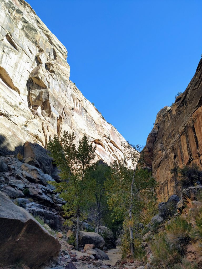 Hackenberry Canyon