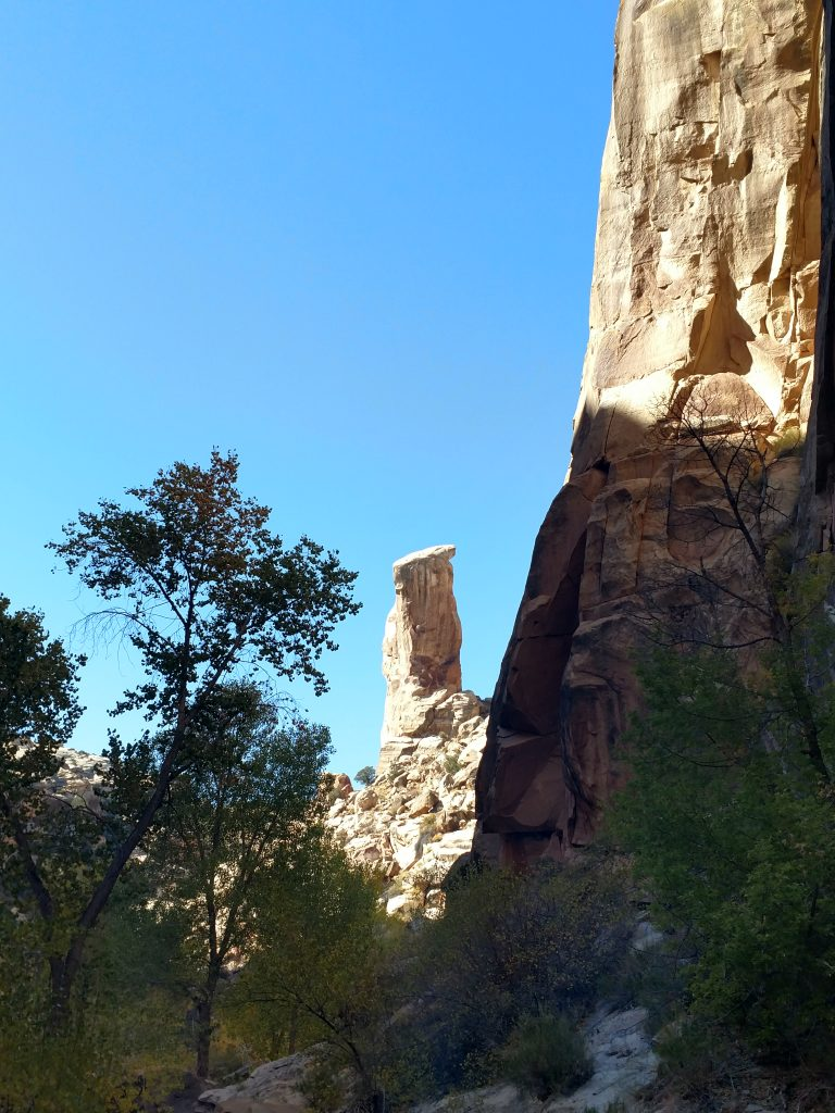 Pinnacle Hackenberry Canyon