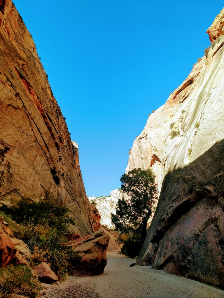 Cliffs of Hackenberry Canyon