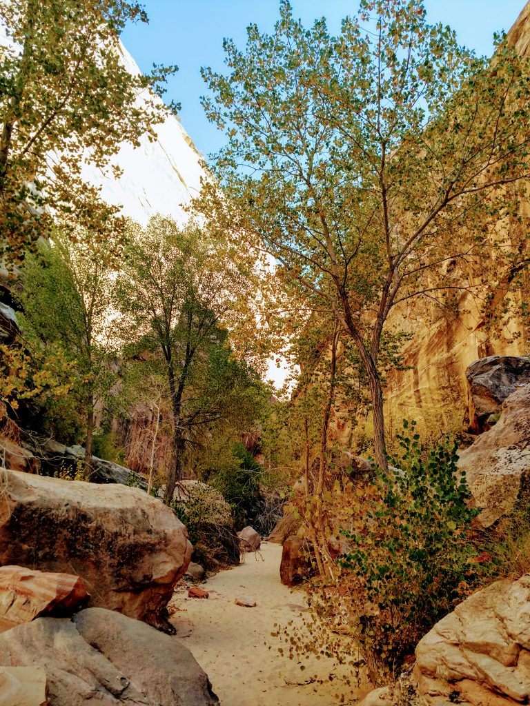 Hackenberry Canyon Grand Staircase-Escalante National Monument
